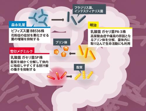 ヨーグルトの菌が生活習慣病や花粉症にも効果<br /> ●乳酸菌やビフィズス菌が腸内で働くイメージ