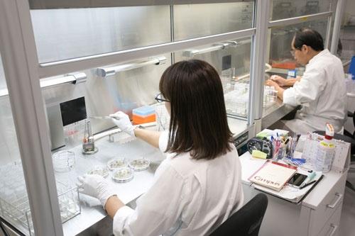 約400人の研究員が大きく7つのテーマの研究に取り組んでいる