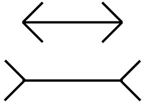 どちらが長く見える?という「矢羽の錯視」。(画像提供:四本裕子)
