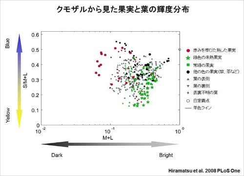 クモザルにとっての輝度の見え方を示した図。横軸が輝度。全体として果実と葉の輝度は重なっているが、部分部分でみると違うところも多い(赤い果実は葉よりも暗い傾向がある)。(画像提供:河村正二)(Hiramatsu, C., Melin, A.D., Aureli, F., Schaffner, C.M., Vorobyev, M., Matsumoto, Y., & Kawamura, S. (2008). Importance of achromatic contrast in short-range fruit foraging of primates. PLoS ONE, 3 (10), e3356のFigure 4を改変)