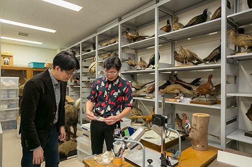 「こういうのを見ているだけでも、僕は楽しくてしょうがないんです」と川上さん。背景に並ぶ標本は研究用ではなく展示のためのもの。