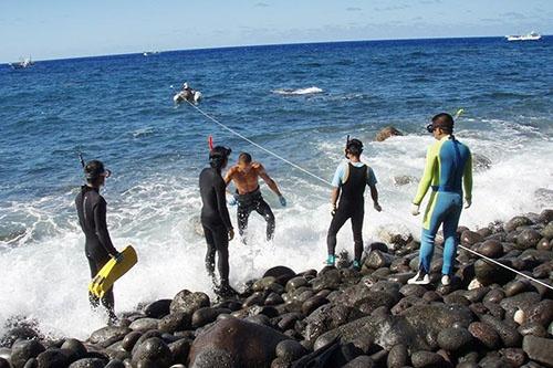 南硫黄島上陸時の様子。(写真提供:川上和人)