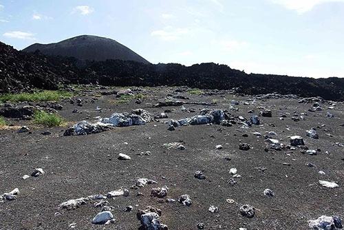 2016年10月に調査した時の西之島。(写真提供:川上和人)