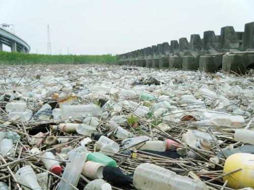 荒川の河口部のプラスチックごみ。(写真提供:高田秀重)