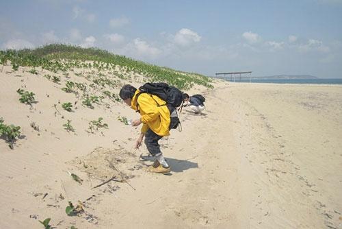 モザンビークの南端に近いポルトゥゲーゼス島でマイクロプラスチックを採取中。(写真提供:高田秀重)