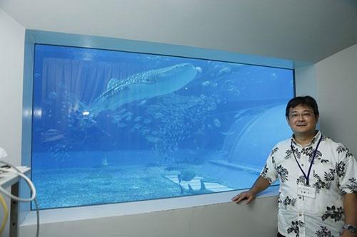 沖縄美ら島財団総合研究センター動物研究室室長の佐藤圭一さん。「黒潮の海」大水槽に設けられた研究用の観察窓の前で。