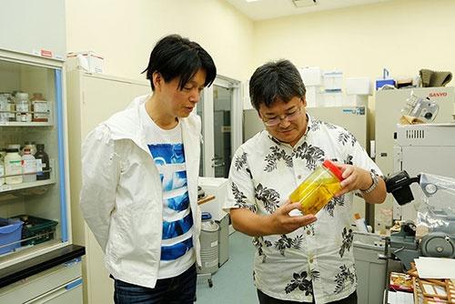 佐藤さんの実験室。繁殖生理の研究には、解剖や組織の分析などは欠かせない。ほかではなかなか入手できないサンプルがたくさん保管されている。