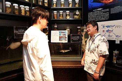 「サメ博士の部屋」にある繁殖について展示・解説する一角。ここにも貴重な標本が並べられている。沖縄美ら海水族館ならではの充実ぶりだ。