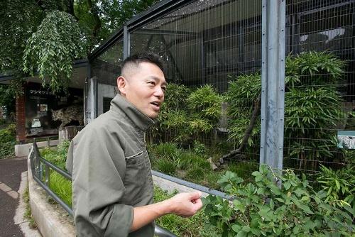ヤマネコをはじめ、唐沢さんはネコ科動物の経験が豊富な飼育員だ。