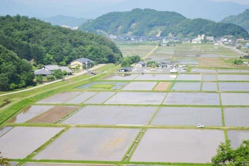 左の森のすそにある施設が兵庫県立コウノトリの郷公園。水田などを主な餌場にするコウノトリはまさに「里の鳥」だ。(写真提供:豊岡市)