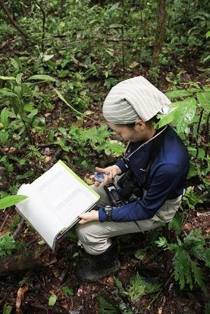 1分ごとに行動を記録する。それを8時間。オランウータンの調査には忍耐力が必須だ。(写真提供:川端裕人)