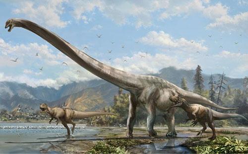 大型竜脚類チージャンロンの復元図。(Credit: Zhongda Chuang)