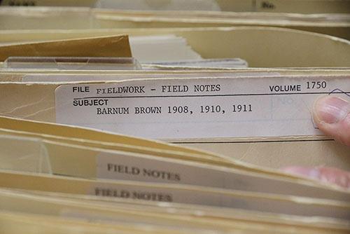 なんと、かつての恐竜ハンターたちが残したフィールドノートのコピーも揃っている。これはバーナム・ブラウンのファイル。(写真提供:川端裕人)
