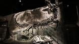 発掘の聖地と博物館で恐竜まみれだった高校時代