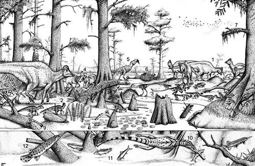 ハドロサウルスの営巣地の復元図。番号の内容は以下の通り。 1)営巣中のハドロサウルス類、2)ハドロサウルス類の幼体、3)幼体を襲うトロオドン、4)角竜(パキリノサウルス)、5)ティラノサウルス類、6)よろい竜、7)トカゲ、8)有袋類(哺乳類)、9)カメ、10)チャンプソサウルス、11)アミア類の淡水魚、12)ガー。(Adapted from Fanti & Miyashita (2009): illustration by Lucas Panzarin)