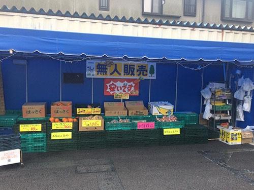 週末の野菜の販売は「無人販売」に変えた
