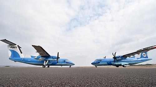 天草空港に並ぶ初代みぞか号(左)と2代目