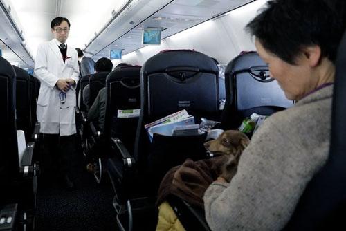 イオンペットの獣医師も同行。気圧の変化で体調を崩すイヌもいるので、獣医が同乗することで安心する飼い主も多いはずだ