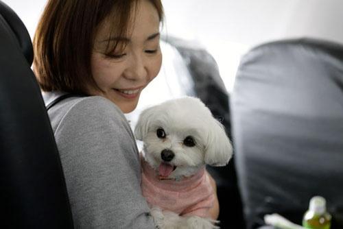 愛犬を膝の上に乗せる乗客。イヌも飼い主も一緒にすごすことができ、終始、リラックスした表情だった