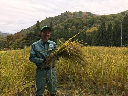掛け流しの雪解け水だけで育てたコシヒカリ。稲を持っているのは近正宏光氏(新潟県阿賀町)
