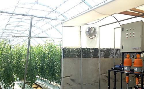 ゼロアグリを導入した栽培ハウス