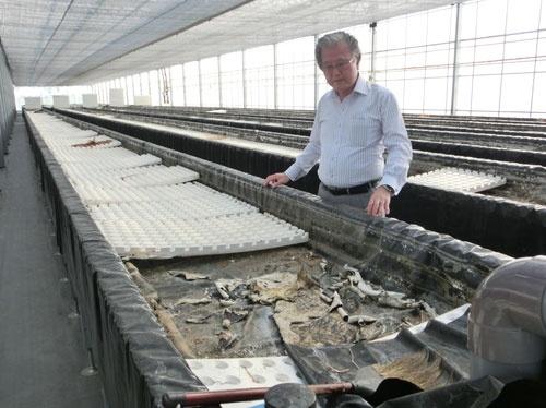 再稼働前の植物工場を点検するセンコン物流の久保田晴夫社長(宮城県名取市)