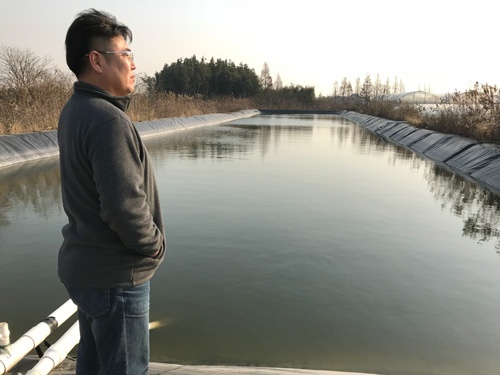 栽培に使う水をためる貯水池(上海市奉賢区)