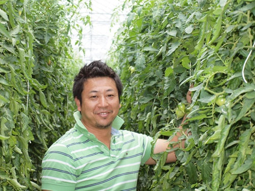 オランダで日本の品種の栽培に挑む今井寛之氏(写真は今井氏提供)