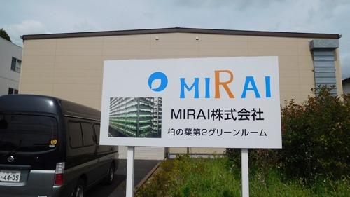 MIRAIの植物工場。この中でレタスが生産されている