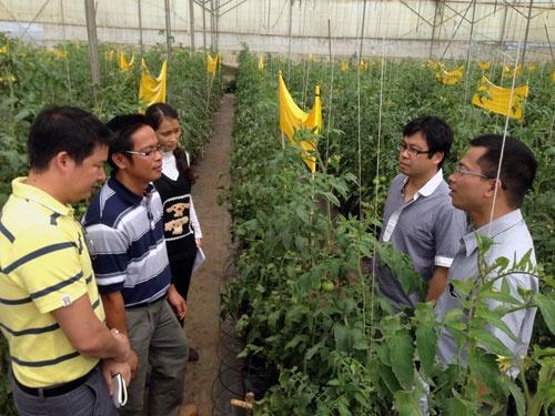 ベトナムの連携農場と話す田中氏(右から2人目、ラムドン省のダラット高原、写真は田中氏提供)