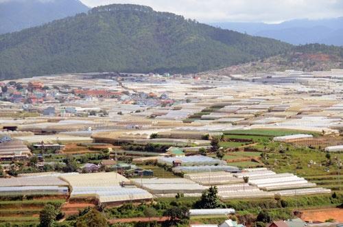 田中氏が農場展開を始めたベトナムのダラット高原(写真は田中氏提供)
