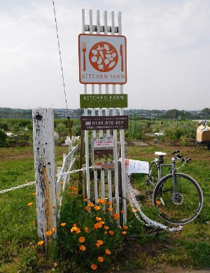 体験農園のニーズはますます拡大中(マイファームの体験農園、横浜市神奈川区片倉)