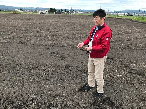 トウモロコシ畑から今年、稲作に変えた田んぼ(秋田県横手市)