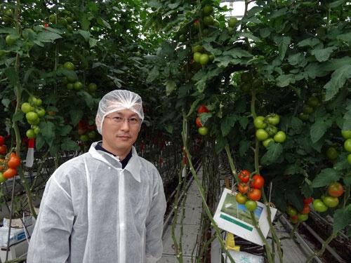 日本の施設園芸の現状に警鐘を鳴らす久枝和昇氏(オランダのトマトの試験圃場で)