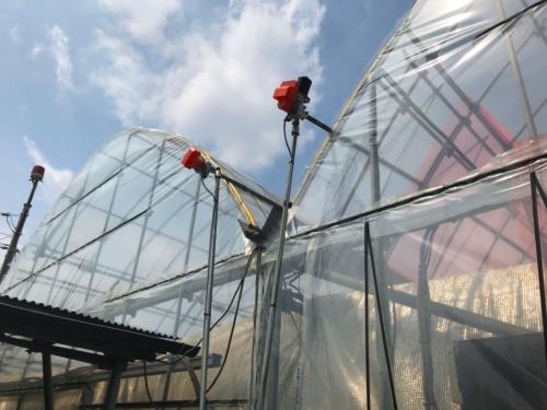 栽培と収入を安定させるために取り入れた日照量のセンサー