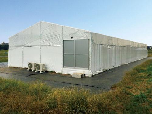 ビニールハウスを基礎にした植物工場(西東京市の東京大学の生態調和農学機構、写真提供:プランツラボラトリー)