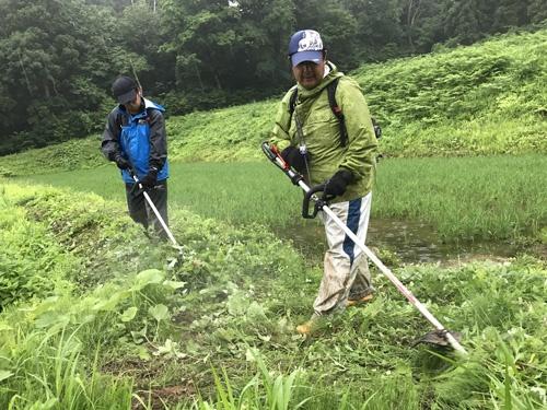 中山間地の草刈りはとくに重労働(新潟県糸魚川市)