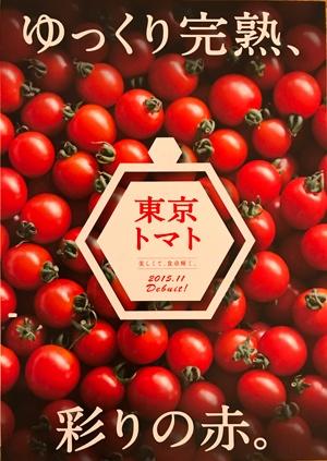 デザイナーの江藤梢さんが作成したパンフレット(西東京市)
