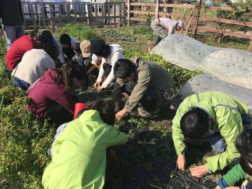 農作業でストレスが軽減する(国立市)