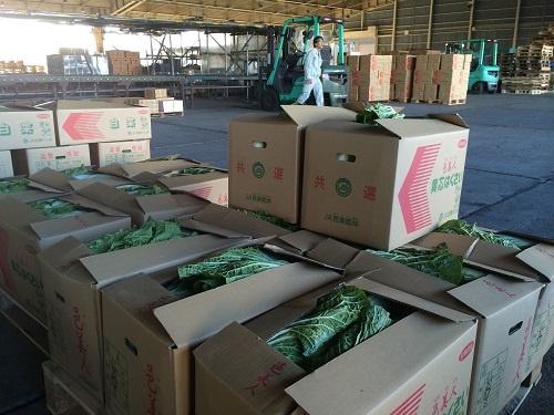 日々大量の野菜が出荷されるJA邑楽館林の施設(群馬県館林市)
