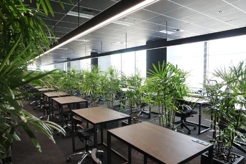 「世界一集中して働ける空間」を目指してJINSが新たにつくった「Think Lab」内部