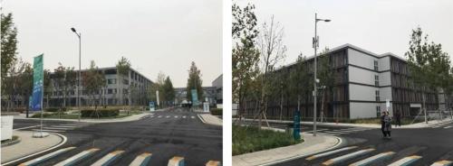 低層の建物が並ぶ新区内