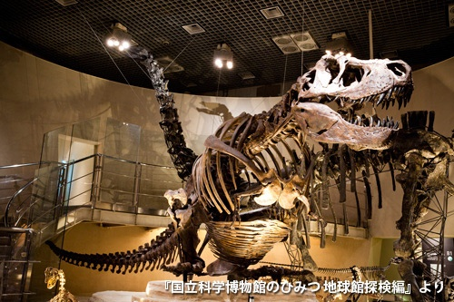 最新の研究に基づき、しゃがんだ姿勢で再現されたティラノサウルス