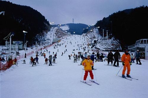 タイ人は雪に対する憧れも強い。佐賀県の天山スキー場は小規模ではあるが、スキービギナーもじゅうぶんに楽しめるスキー場だ。