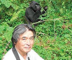 <b>山極教授は霊長類、特にゴリラやチンパンジーの生態や社会から、人間家族の由来や人間に独特なコミュニケーションの起源などを考察してきた</b>