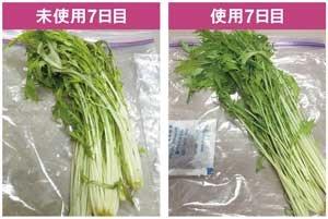<b>タンカフレッシュを使うことで、野菜はみずみずしさを保てるようになる</b>