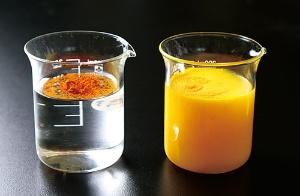 セラクルミン(写真右)は水溶性が高く通常のクルクミン(左)に比べて約27倍の吸収率がある(写真=陶山 勉)