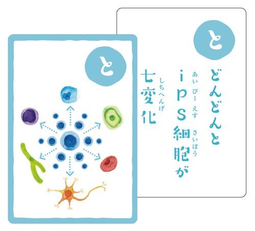 """毎回、冒頭で、京都大学iPS細胞研究所制作の「幹細胞かるた」をご紹介。 <a href=""""./?P=5#section1"""">最後で</a>解説しています。"""
