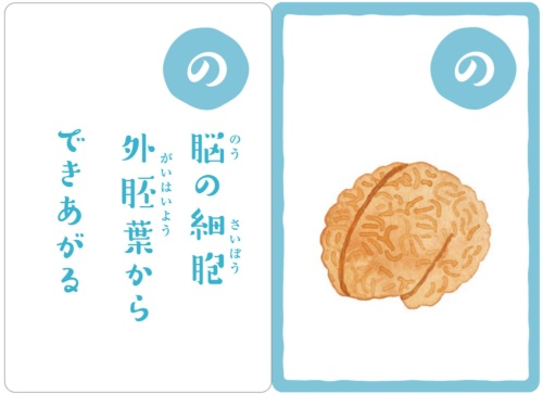 """京都大学iPS細胞研究所制作の「幹細胞かるた」。最後で<a href=""""./?P=3#section1"""">解説</a>しています"""