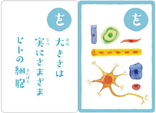 京都大学iPS細胞研究所制作の「幹細胞かるた」。最後で解説しています